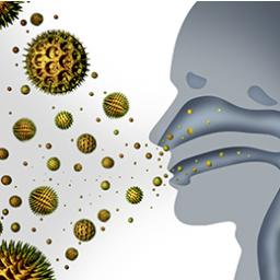 Immunity & Allergies